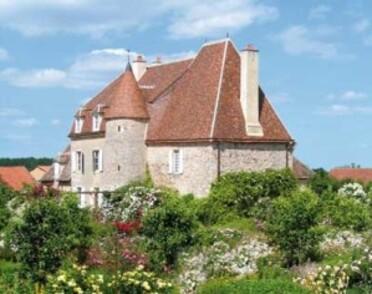 Jardin-de-Drulon---chateau.jpg