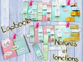 Lapbook des natures et des fonctions
