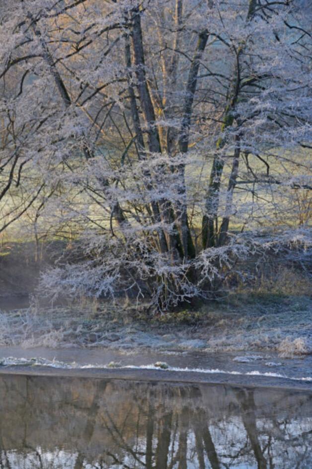 Givre-neige-6 3096 modifié-3