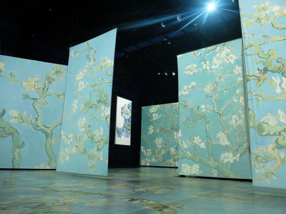 Le Havre, exposition Vincent van Gogh autrement.