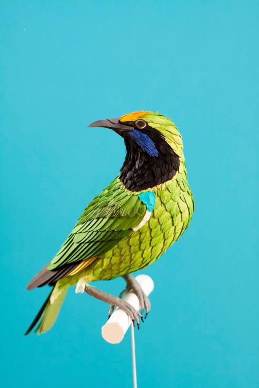 Diana Beltran Herrera-birds-paper-numerik13.jpg