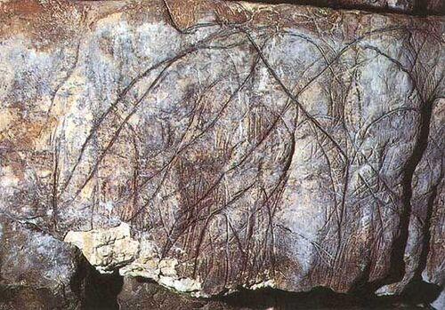 Les Grottes ornées de l'Ardèche