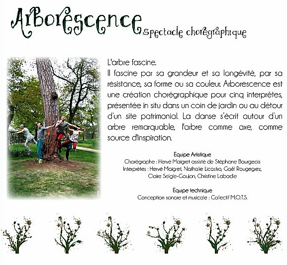 arborescence - Copie