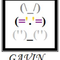 Gavin Et Titi Zoé De Gavin