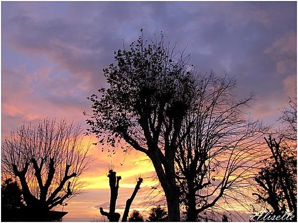 ciel-02-12-2011-8h02.jpg