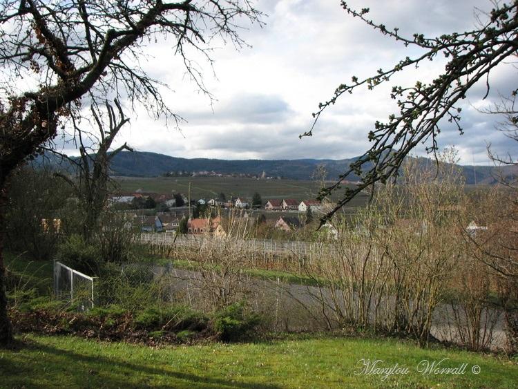 Beblenheim (68) : Balade dans le parc