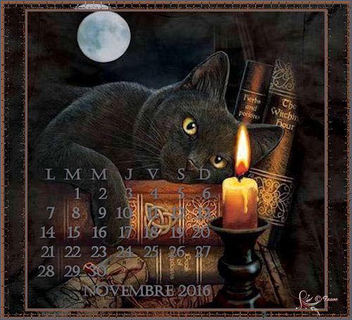 Mes calendriers de Novembre