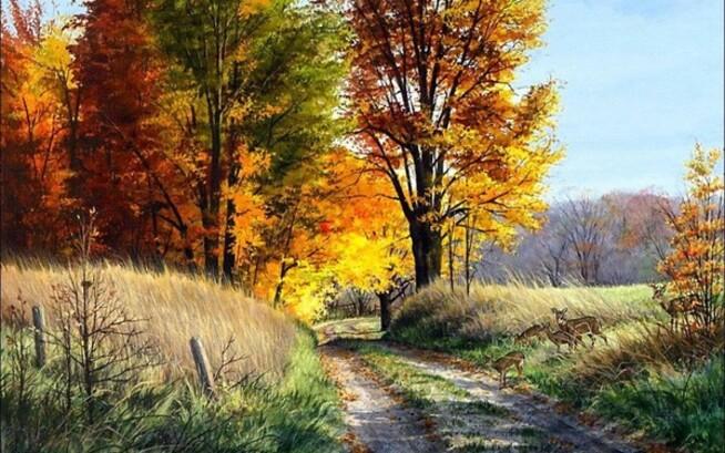 automne,paysage,couleurs