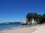 Hahei Beach - Raglan