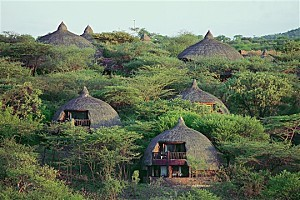 serengeti-serena-lodge