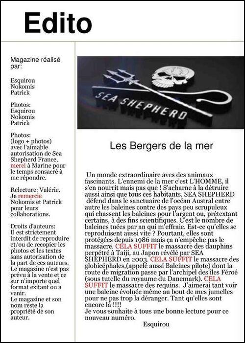 """Magazine """"Toutes Saisons"""" numéro 2"""