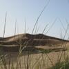 503 Maroc Erg Chebbi Dunes d\'or