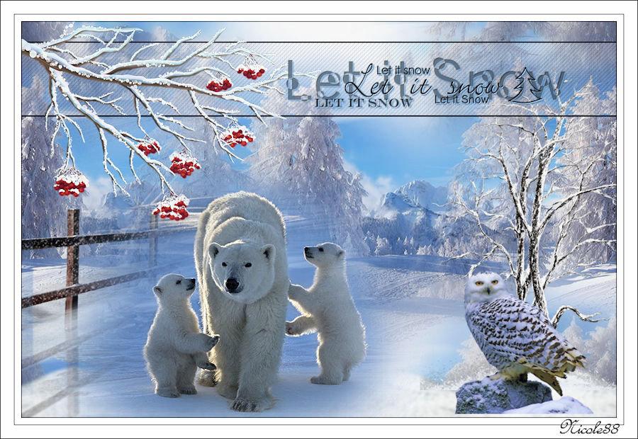 En hiver 200101034510787480