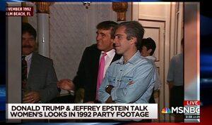 ➤ Affaire Epstein : une météorite sur le point de frapper le monde des élites ?