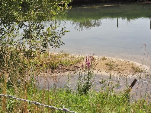 L'eau et l'environnement