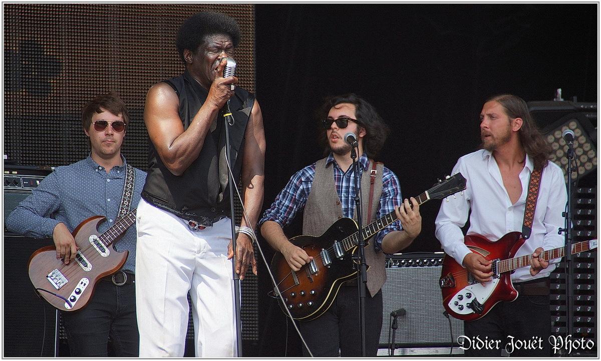Festival des Vieilles Charrues 2013