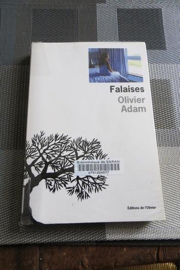 Falaises Olivier Adam