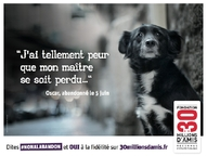 Mes Animaux  ma campagne