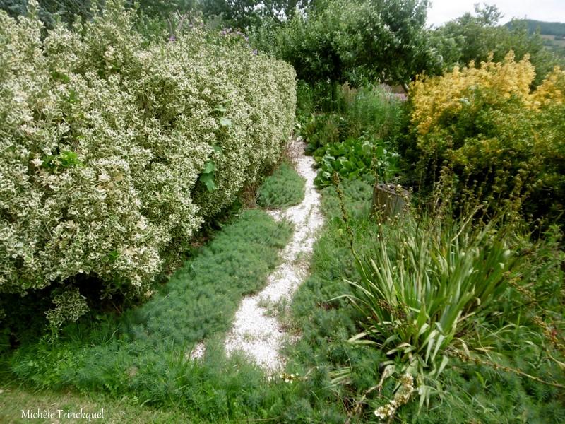 Une balade dans les Jardins de Cloggs à GAUSSAN (65), le 14 juillet (suite)...