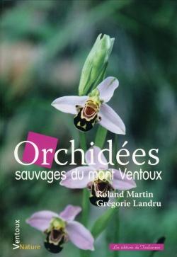 - Nouvelles orchidées sauvages du Ventoux