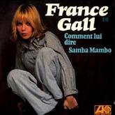 Comment lui dire est une chanson de France Gall. Elle est initialement parue en janvier 1976 sur l'album France Gall et en single. La chanson a été écrite et composée par Michel Berger. L'enregistrement a été produit aussi par Michel Berger