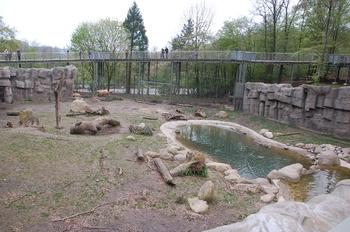 Zoo Osnabruck d50 2012 110