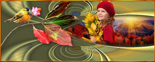 My golden autumn