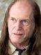 Serge Lhorca doubleur francais david bradley harry potter