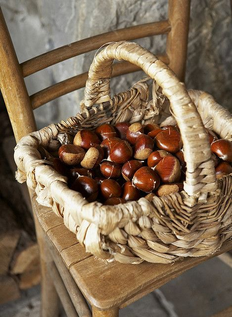Basket of Chestnuts
