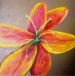 Coeur-de-fleur--d-cembre-2009-001