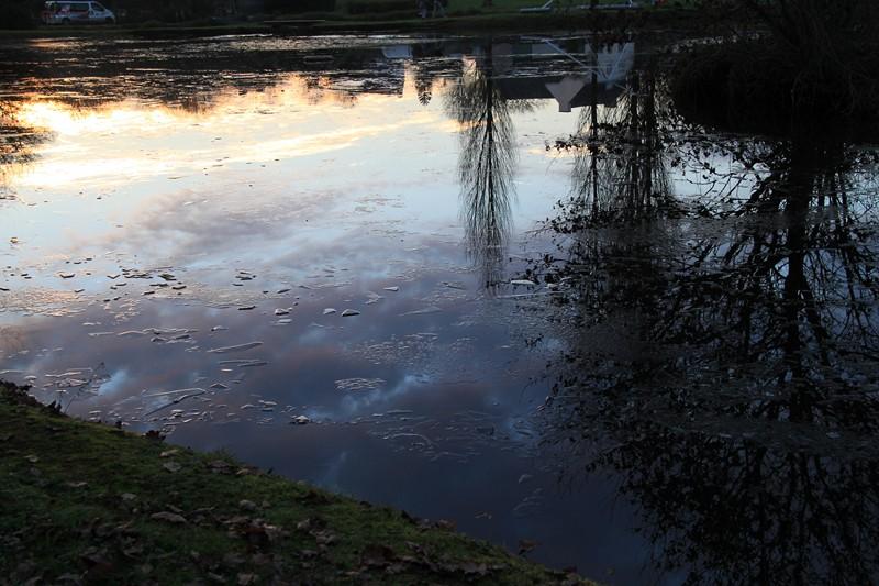 840 - Des reflets au Trévoux (29N)