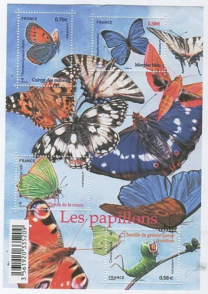 BF-papillons-2010.jpg