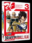 DRAGON BALL KAI - ARC SAIYANS