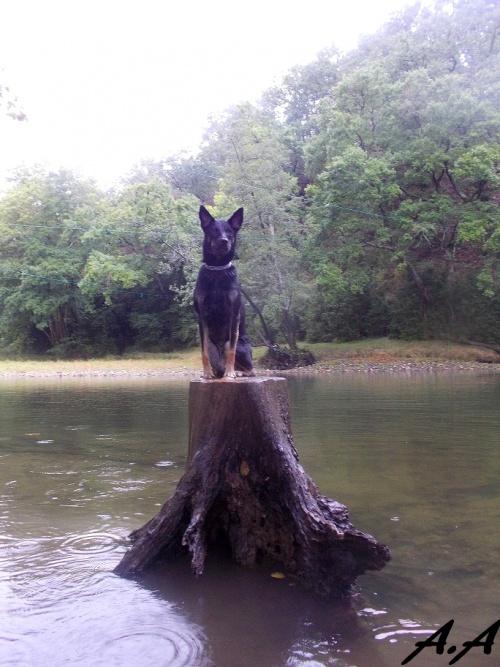 Dans l'eau quand il pleut c'est le mieux