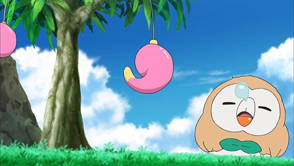 Pokémon - 19x04 - Un rite de passage flamboyant !