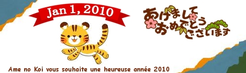 bonne année 2010 あけましておめでとう