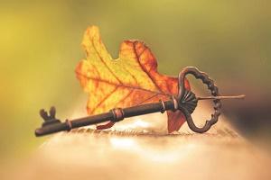 L'automne revient ...