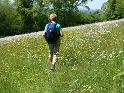 La randonnée du 30 mai à Montchauvet