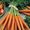 La carotte de Créances