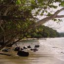 Avant la plage de la Pointe Rouge, vers Trinité - 1 - Photo : Hervé