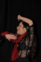 Arte Flamenco 2012 - Mont de Marsan