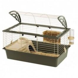 Cages pour rongeur