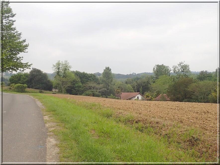 919 - Suite20 : -Notre Chemin vers St Jacques de Compostelle à travers ses anecdotes-