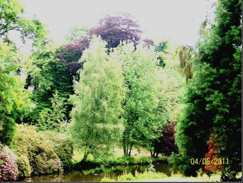 le parc arboretum de jumet053