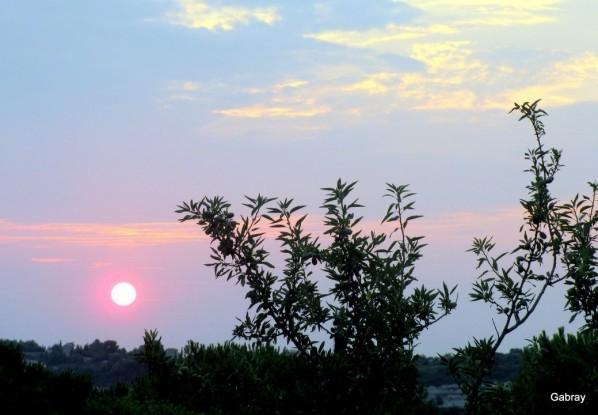 P05---Soleil-du-matin.JPG
