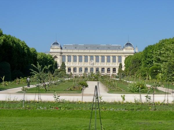 24 - Jardin des plantes