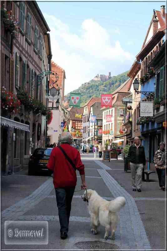 Alsace Haut-Rhin Route des Vins Ribeauvillé château de Saint Ulrich