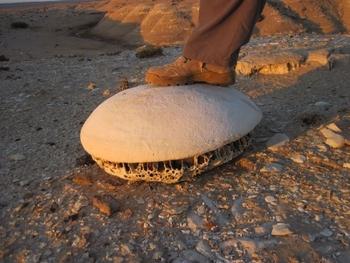 maroc pierre bizarre