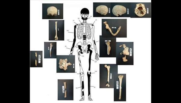 Amphipolis : à la surprise générale, cinq squelettes !