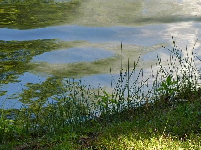 Autour du Lac des Cygnes de Metz - 13